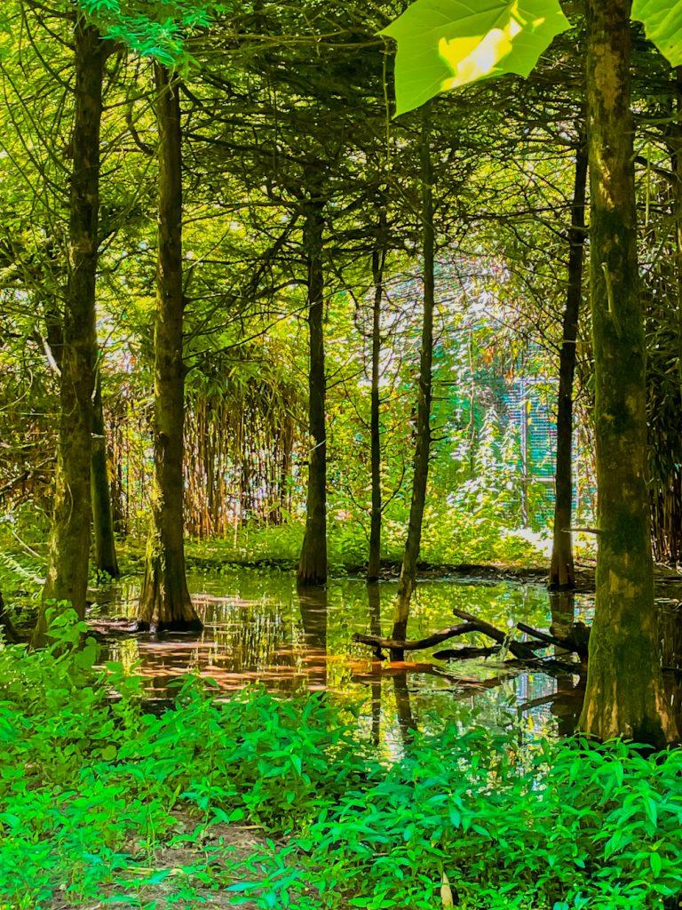 oasi di sant'alessio